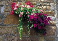 Hanging basket against granite wall